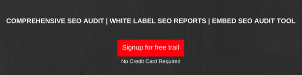 Comprehensive-seo-audit-white-label-seo-reports-embed-seo-audit-tool