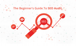 The Beginner's Guide To SEO Audit Tool