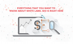 Everything That You Want To Know About White Label SEO Is Right Here