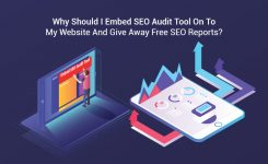 Why Should I Embed SEO Audit Tool On To My Website And Give Away Free SEO Reports?