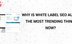 Why Is White Label Seo Audit The Most Trending Thing Now?