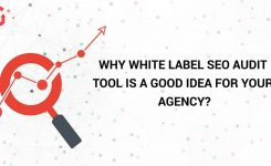 Why White Label SEO Audit Tool is a Good Idea For Your Agency?